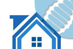 adn-pack-maison-blue